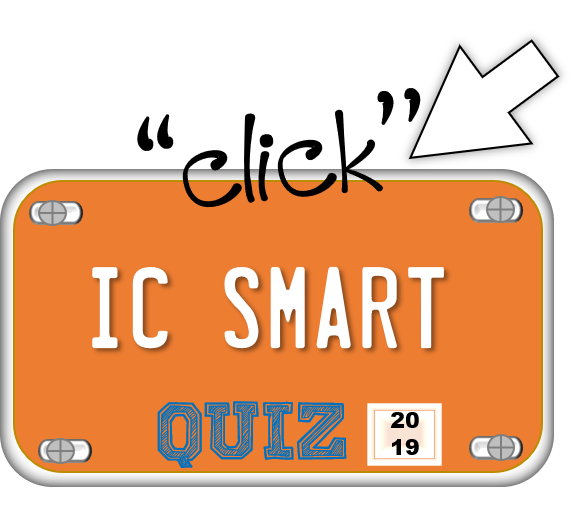 IC Smart License Plate